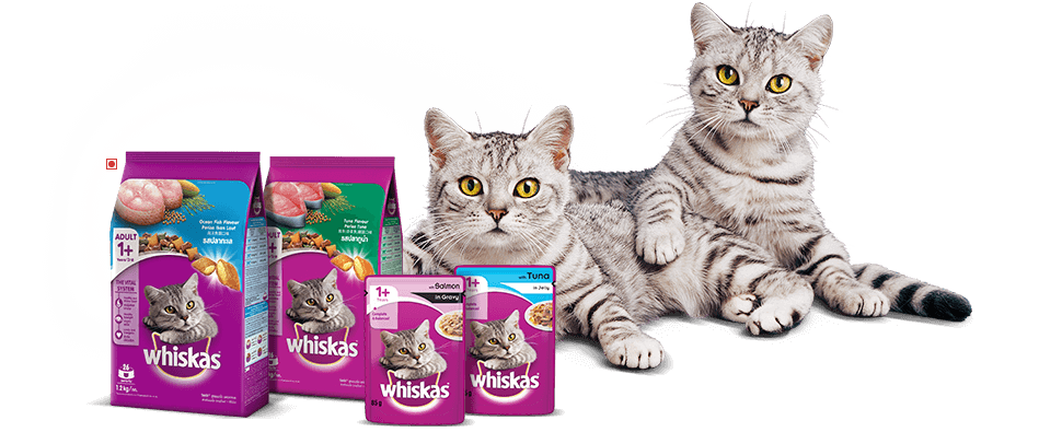 The WHISKAS® Range For Adult